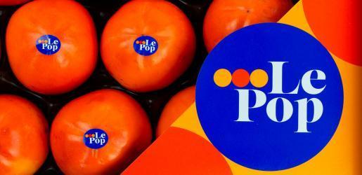 diseño marca y packaging